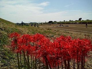 Higanbana_2